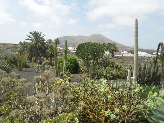 Uitzicht vanuit het Musea agricola el Patio, Lanzarote, Canarische eilanden, Spanje