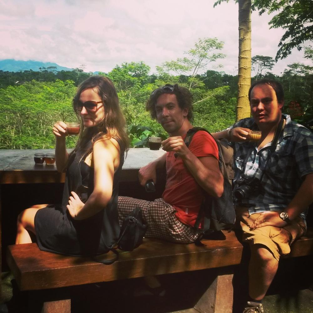 luwak koffie in Bali, Indonesië, Zuid Oost-Azië