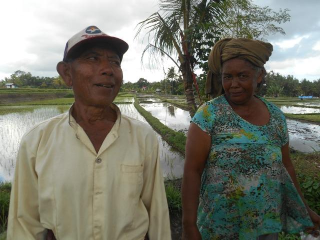 Enkele fotogenieke passanten in de rijstvelden van Ubud, Bali, Indonesië, Zuid Oost-Azië