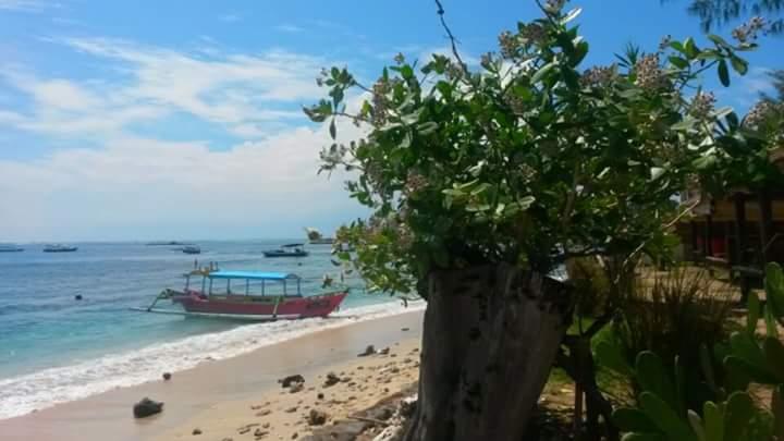 Kleurrijk bootje langs kust van Gili Air, Gili eilanden, Lombok, Indonesië, Zuid Oost-Azië