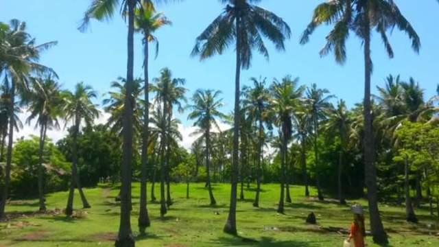 Binnenland van Gili Air, gili eilanden, Lombok, Indonesië, Zuid Oost-Azië
