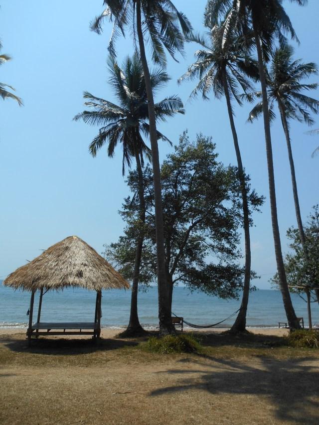 Palmbomen en hutje op Rabbit Island, Koh Tonsai, Kep, Cambodja, Zuid Oost-Azië
